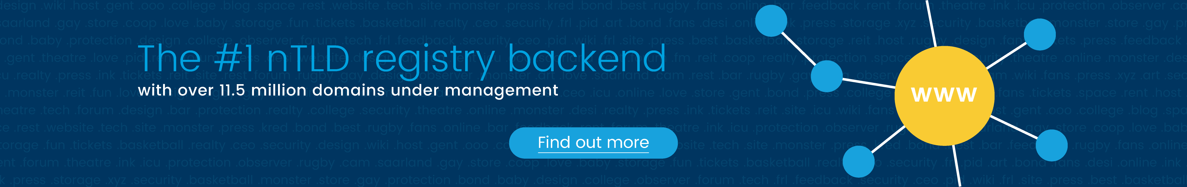 The #1 gTLD registry backend with over 11.5 million domains under management